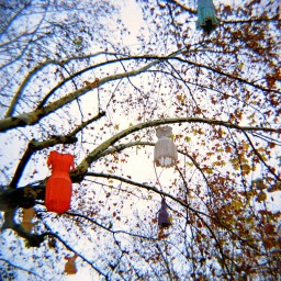 Lomography Color Negative 400 ISO 120 3 Pack