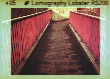 Lobster Redscale 110 ISO 200