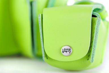 Fisheye Case Lime Punch