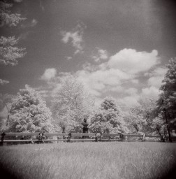 Ilford SFX Infrared 200 120 Film