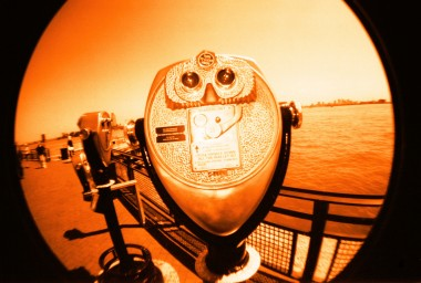 Fisheye One Woodgrain